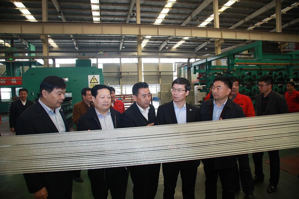 集团公司副总经理张延伟到公司指导工作